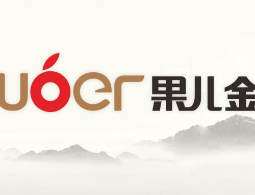 东凯公司标志设计案例:安徽果儿金融信息服务有限公司logo设计